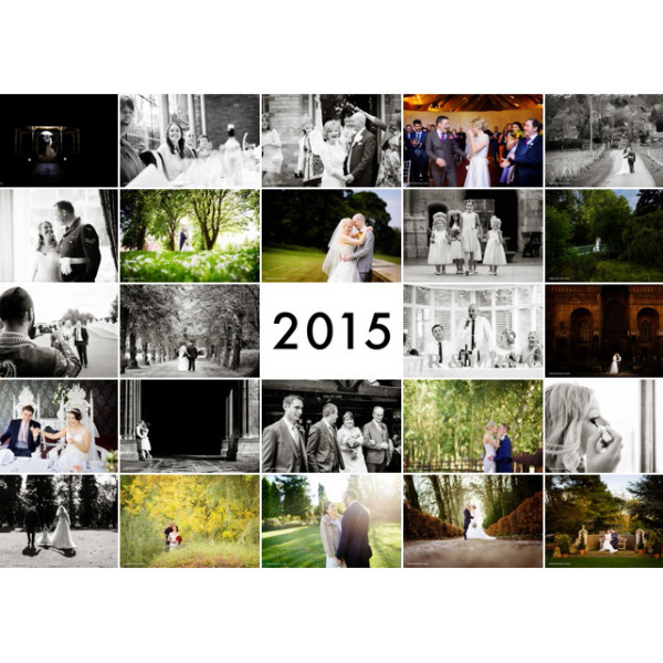 2015 Review as a Wedding Photographer